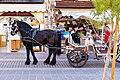 Carriage in Chania, Greece.jpg