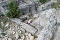 Castellar de Meca 24.jpg