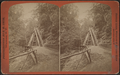 Cathedral stairs, Watkins Glen, by Crum, R. D., fl. 1870-1879 2.png