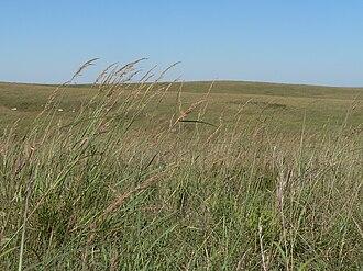Willa Cather - Willa Cather Memorial Prairie in Webster County, Nebraska