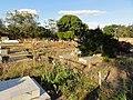 Cementerio Guaribe - panoramio (7).jpg