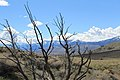 Centennial Park - panoramio (33).jpg