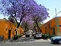 Centro, Tlaxcala de Xicohténcatl, Tlax., Mexico - panoramio (268).jpg