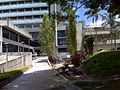Centro Medico Docente La Trinidad (CMDLT) 2012 003.jpg