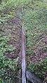 Chamberonne - Bois d'Orjulaz 1.jpg