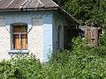 Chernobyl and Pripyat (4854346018).jpg