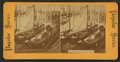 Chicago River, elevators, etc, from Robert N. Dennis collection of stereoscopic views.png