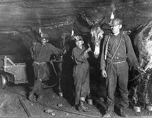 Child labor laws in the United States - Children working with ponies in a coal mine