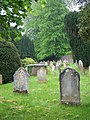 Churchyard, St Andrew's Church, Ashburton - geograph.org.uk - 1309945.jpg