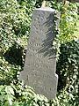 Cieszyn Stary Cmentarz Żydowski 002.JPG