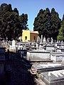 Cimiterio ebraico di pisa 2014 genearl view 6.jpg