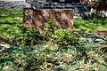 City of London Cemetery - overgrown granite grave with glass chippings.jpg