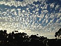 Clouds at UCSD 4 2013-08-24.jpg