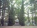 Cmentarz Żołnierzy Radzieckich Hajnówka.JPG