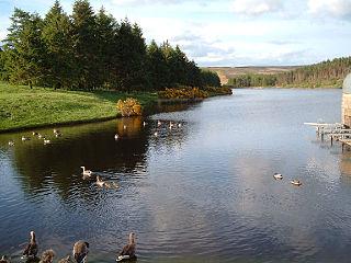 Cod Beck Reservoir Reservoir in North Yorkshire, England