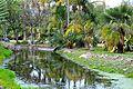 Colección Palmetum de Santa Cruz de Tenerife 19.JPG