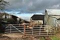 Combpyne Rousdon, Lidyates Barn - geograph.org.uk - 294364.jpg