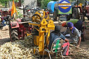 Agriculture in India - Agriculture has a significant role in the socio-economic fabric of India. Here Sikh farmers are deploying a tractor and cane crusher to produce and distribute free cane juice at a festival.
