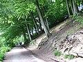 Compstall Etherow Canal 0233.JPG