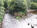 Confluence on the Bride - geograph.org.uk - 574692.jpg