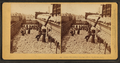 Cotton warehouse, drying cotton, Charleston, S.C, by Kilburn Brothers.png