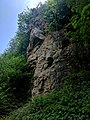 Creswell Gorge, Creswell Craggs, Notts (101).jpg