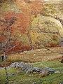Cwm Egnant - geograph.org.uk - 61950.jpg