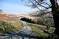 Cwm Pysgotwr Fawr at Bryn Ambor, Ceredigion - geograph.org.uk - 1234576.jpg