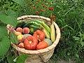 Dünyanın en doğal ve organik sebzeleri - Sapanca - panoramio.jpg