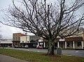 Dadeville Alabama.JPG