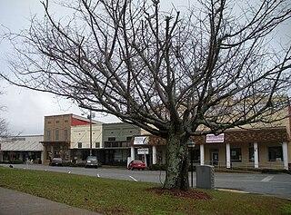 Dadeville, Alabama City in Alabama, United States
