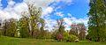 Dahlen Park Tulpenbaum Fruehjahr.jpg