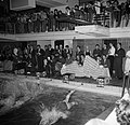 Dames duiken in het water bij de Deense kampioenschappen in de zwemhal van Frede, Bestanddeelnr 252-9253.jpg