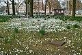 Dapperbuurt, Amsterdam, Netherlands - panoramio (1).jpg