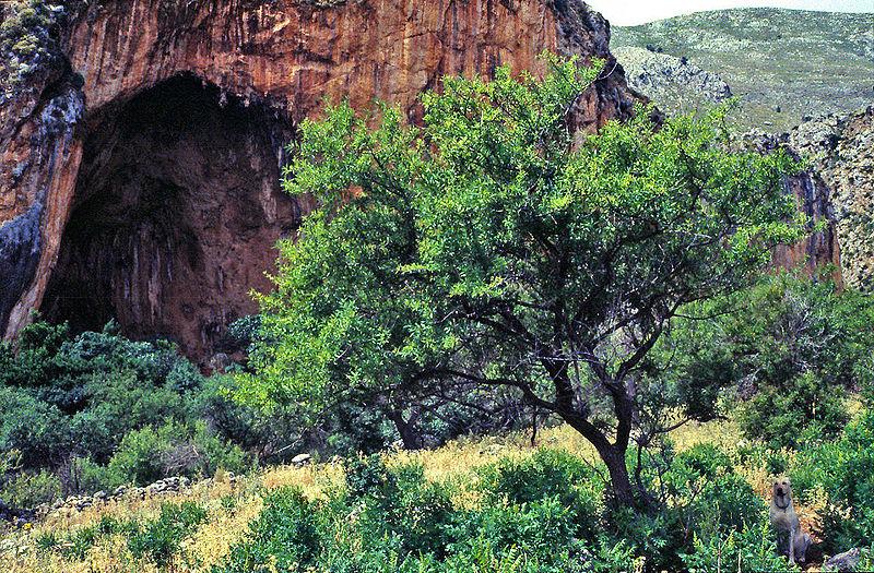 File:De- San Vito lo Capo, Zingaro-NatSchGeb, Uzzo-Grotte.jpg