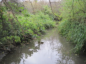 Deans Brook - Deans Brook in Stoneyfields Park