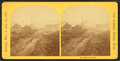 Devonshire Street, from Robert N. Dennis collection of stereoscopic views 2.png