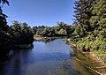 Dickey River mouth.jpg
