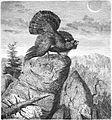 Die Gartenlaube (1869) b 501.jpg