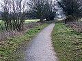 Dismantled railway, Crow - geograph.org.uk - 1186639.jpg