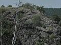 Divoká Šárka - panoramio (2).jpg