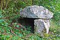 Dolmen d'Ayer, hameau de Bordes-sur-Lez (Ariège).JPG