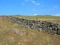 Dry-Stone Dyke - geograph.org.uk - 378960.jpg