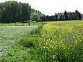 Duisburg Neerijse 14.jpg