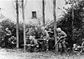 Duitse Wehrmacht en SS militairen in dekking langs de kant van de weg. GN15731.jpeg