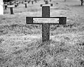 Duitse begraafplaats Ysselsteyn in Limburg, Bestanddeelnr 915-2761.jpg