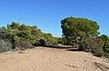 Dunes de Guardamar del Segura, Baix Segura.JPG
