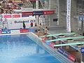 EK Zwemmen 2006 3m synchroon mannen.jpg