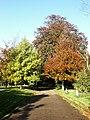 Earlham cemetery - geograph.org.uk - 79854.jpg