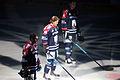 Eisbären Berlin-Nürnberg Ice Tigers-2015-02-15-cc-by-denis-apel-03.JPG